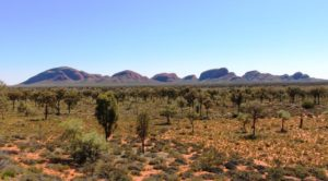 The Olgas from the sunrise viewing area