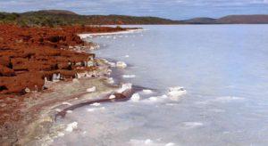 Chunks of salt at the edge of the lake.