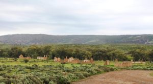 The ruins of Kanyaka Homestead 25 Km south of Hawker. It was built in 1860 and abandoned in 1888